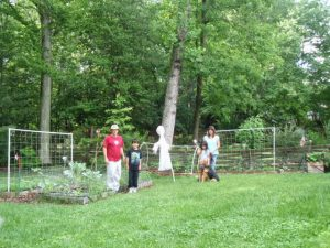 Backyard in 2010 before permaculture